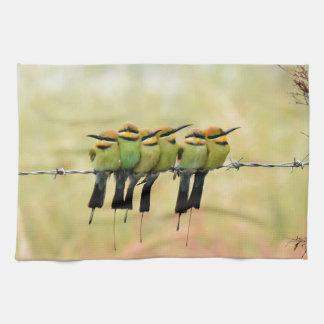 RAINBOW BEE EATER BIRD RURAL QUEENSLAND AUSTRALIA TOWEL