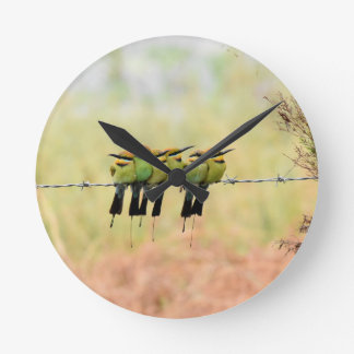 RAINBOW BEE EATER BIRD RURAL QUEENSLAND AUSTRALIA WALL CLOCK
