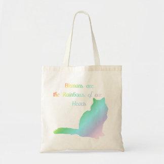 Rainbow Birman