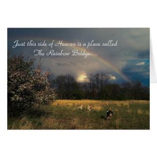 Rainbow Bridge Pet Sympathy Card (Blank inside)