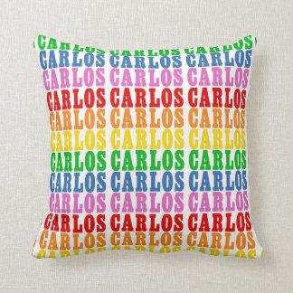 Rainbow Carlos Cushion