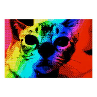 """Rainbow Cat"" colourful, comic book look poster"