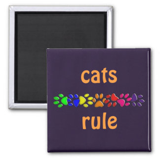 rainbow cat print square magnet