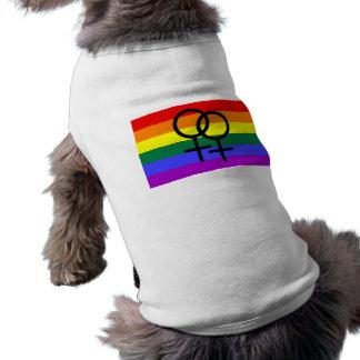 Rainbow Colored Lesbian Pride Flag Shirt