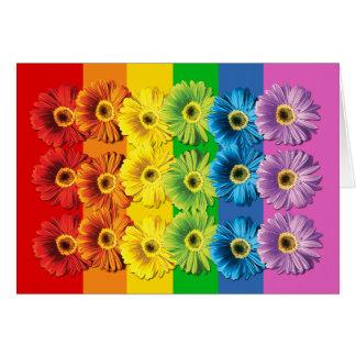 Rainbow Daisies Card