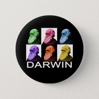Rainbow Darwin button