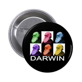 Rainbow Darwin button