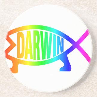 Rainbow Darwin Fish Beverage Coaster