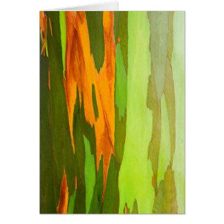 Rainbow Eucalyptus bark, Hawaii Card