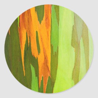 Rainbow Eucalyptus bark, Hawaii Classic Round Sticker