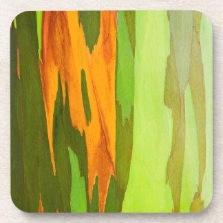 Rainbow Eucalyptus bark, Hawaii Drink Coasters