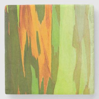 Rainbow Eucalyptus bark, Hawaii Stone Coaster
