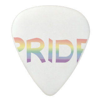 Rainbow Flag Pride Acetal Guitar Pick