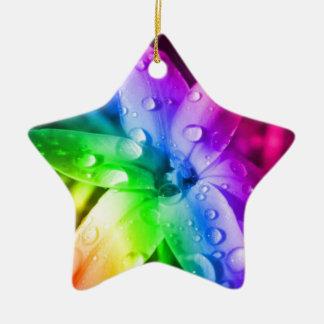 Rainbow flower ceramic star decoration