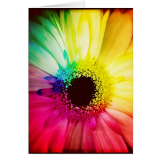 Rainbow Gerbera Daisy Blank Greeting Card