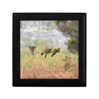 RAINBOW HONEY EATER BIRD QUEENSLAND AUSTRALIA SMALL SQUARE GIFT BOX