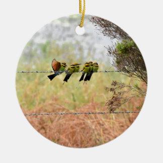RAINBOW HONEY EATER BIRDS QUEENSLAND AUSTRALIA ROUND CERAMIC DECORATION