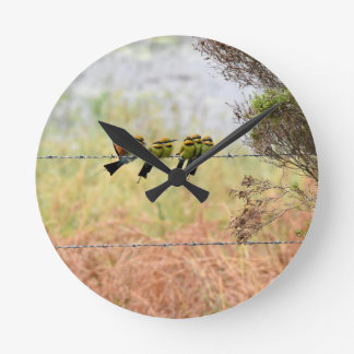 RAINBOW HONEY EATER BIRDS QUEENSLAND AUSTRALIA WALLCLOCK