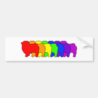 Rainbow Keeshond Bumper Sticker