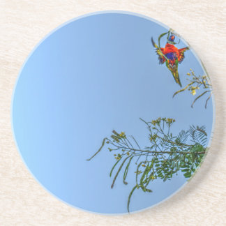 RAINBOW LORIKEET AUSTRALIA ART EFFECTS COASTER