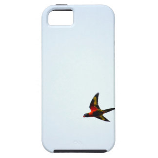 RAINBOW LORIKEET AUSTRALIA ART EFFECTS iPhone 5 COVERS