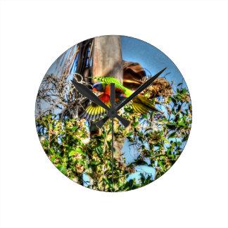 RAINBOW LORIKEET AUSTRALIA ART EFFECTS WALL CLOCKS