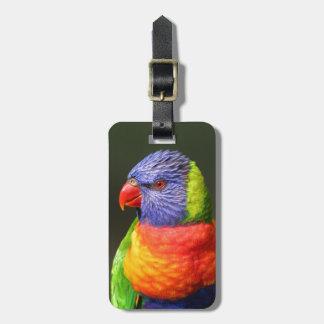 Rainbow Lorikeet Bag Tag