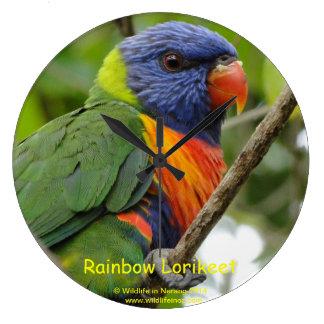 Rainbow Lorikeet Wall Clocks