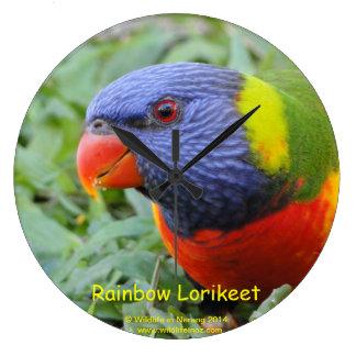 Rainbow Lorikeet Clock