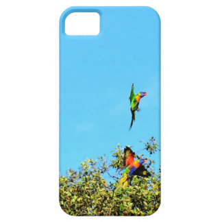 RAINBOW LORIKEET IN FLIGHT AUSTRALIA ART EFFECTS iPhone 5 CASES