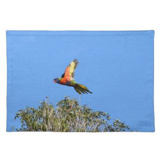 RAINBOW LORIKEET IN FLIGHT QUEENSLAND AUSTRALIA PLACEMAT