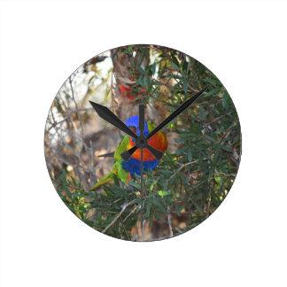 RAINBOW LORIKEET IN TREE RURAL AUSTRALIA WALL CLOCKS