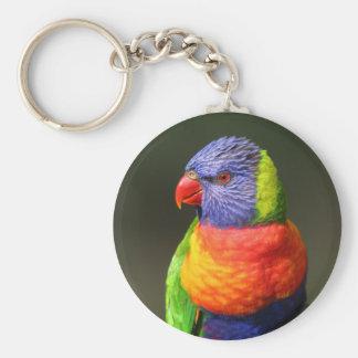 Rainbow Lorikeet Key Ring