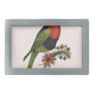 rainbow lorikeet parrot, tony fernandes rectangular belt buckle