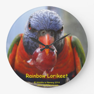 Rainbow Lorikeet Wallclocks