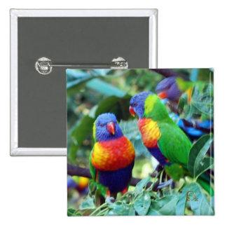 Rainbow Lorikeets 15 Cm Square Badge