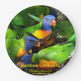 Rainbow Lorikeets Wallclocks