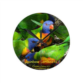 Rainbow Lorikeets Wall Clocks