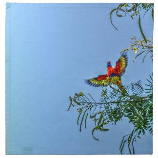 RAINBOW LORIKKET AUSTRALIA ART EFFECTS NAPKIN