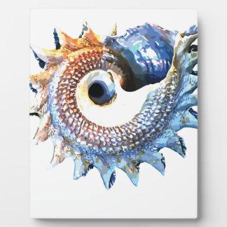 Rainbow Mandala Seashell Golden Spiral Yoga Tee Plaque