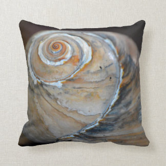 Rainbow Moonsnail Cushion