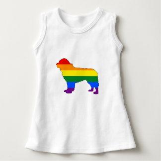 Rainbow Newfoundland Dog Dress