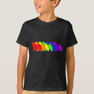 Rainbow Norwich T-Shirt