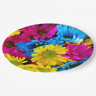 Rainbow of Daisies 9 Inch Paper Plate