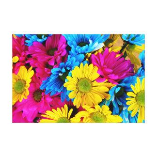 Rainbow of Daisies Canvas Prints