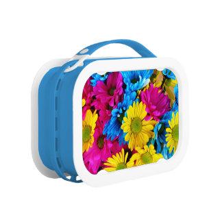 Rainbow of Daisies Lunch Box