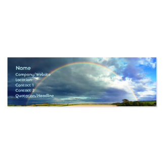 Rainbow Pack Of Skinny Business Cards