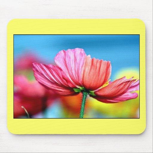rainbow poppy mouse pad
