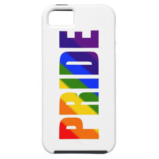 rainbow pride iPhone SE/5/5s case