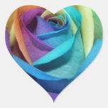 Rainbow Rose Flowers Peace Love Destiny
